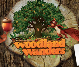 box-education-WoodlandWanders