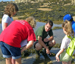Rockpool Rambles: School and Clubs