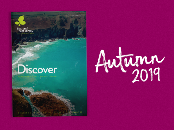 Discover Autumn 2019