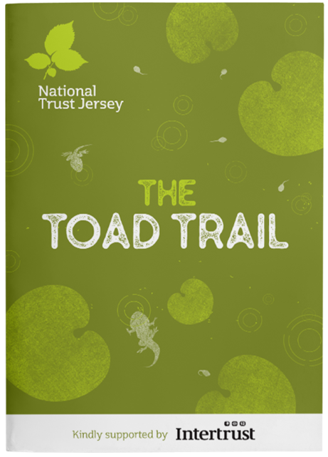 Toad Trail